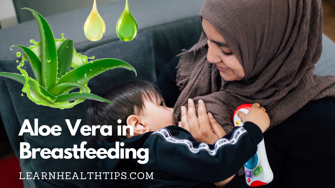 What is aloe vera in breastfeeding and uses of aloe vera in breastfeeding